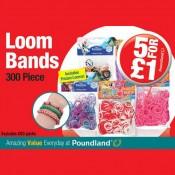 Loomtastic value at Poundland Offer